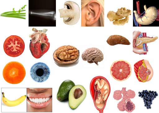 Super foods that look similar to organs they are beneficial for!